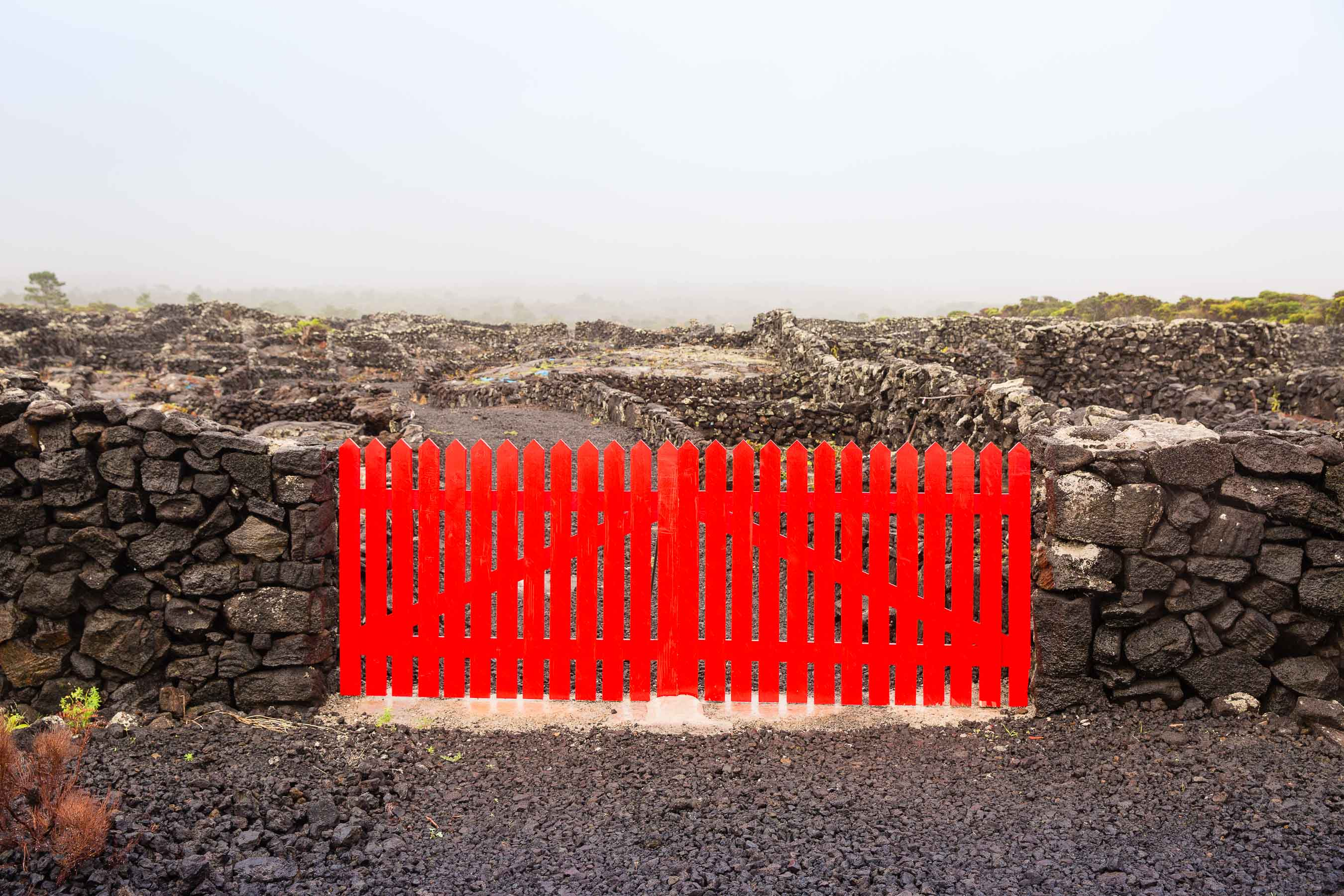Red vineyard gate Pico, Azores